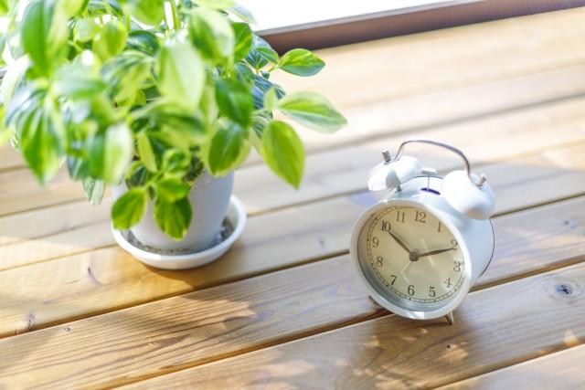ウッドデッキの上に置かれた緑と時計